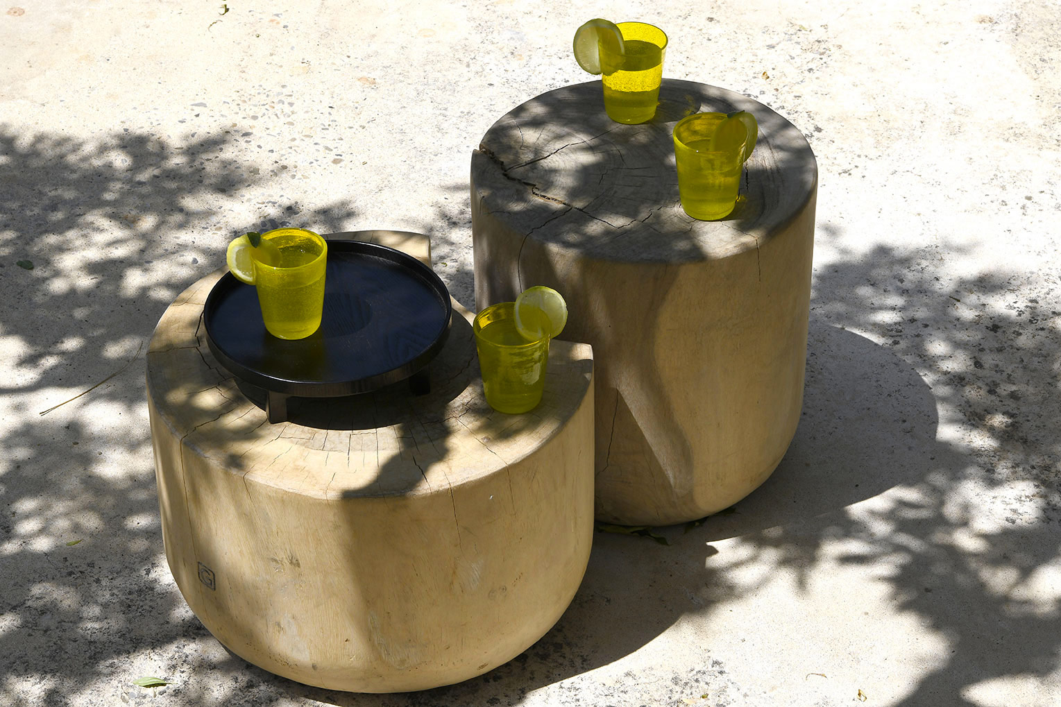 ikigai-rondins-bois